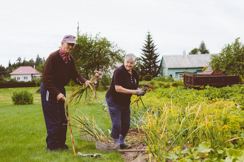 grandparents portrait working in a garden