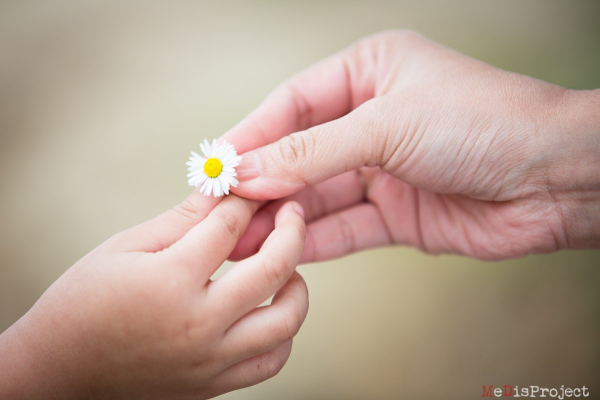 hands with little daisy flower