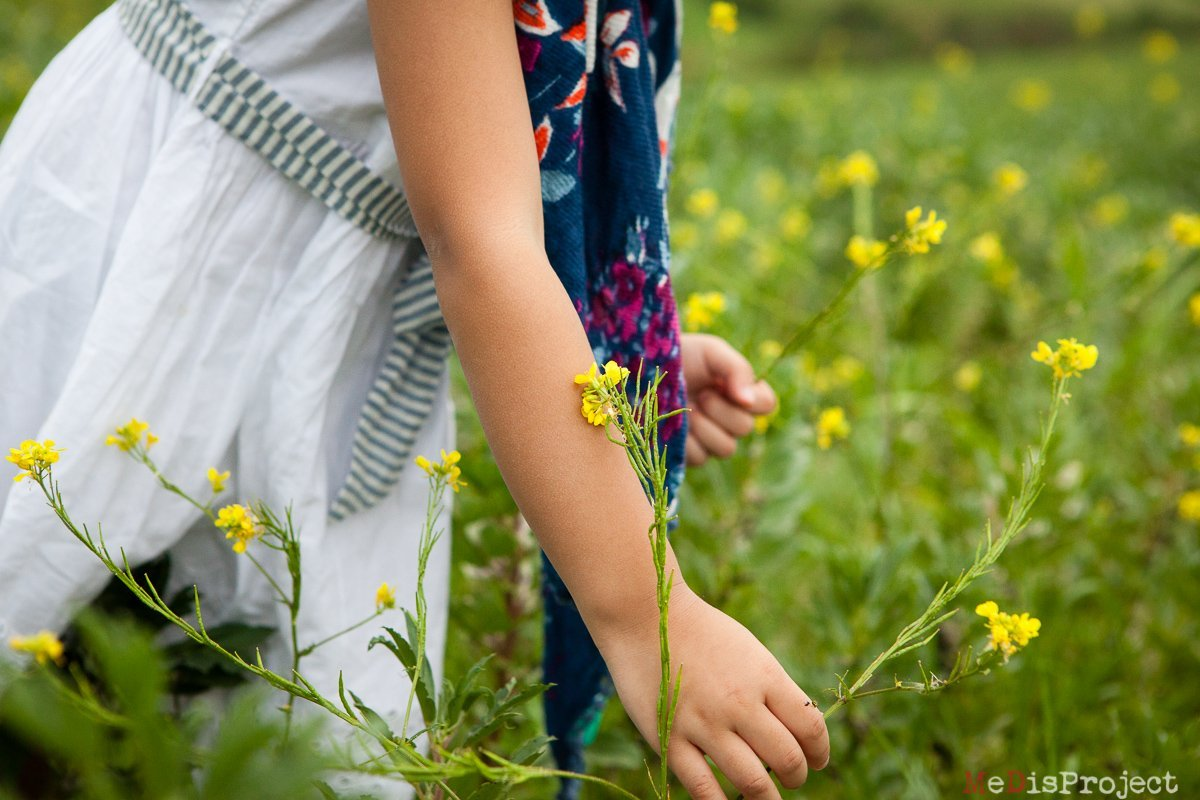 little girl collecting yellow wild flowers