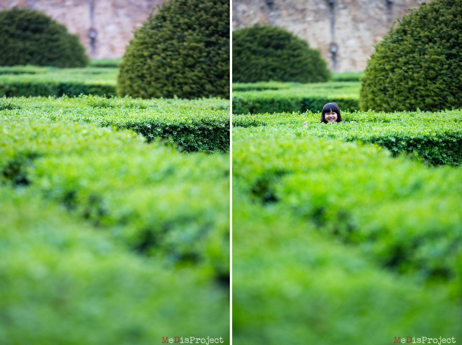 little girl playing peekaboo through the hedges