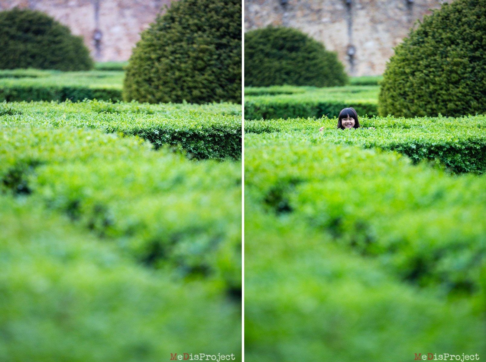 little girl playing peekaboo through the hedges