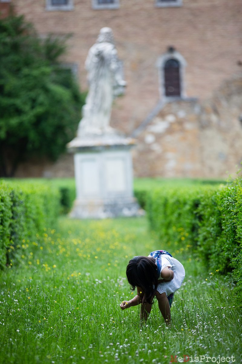girl collecting daisies in san quirico d'orcia
