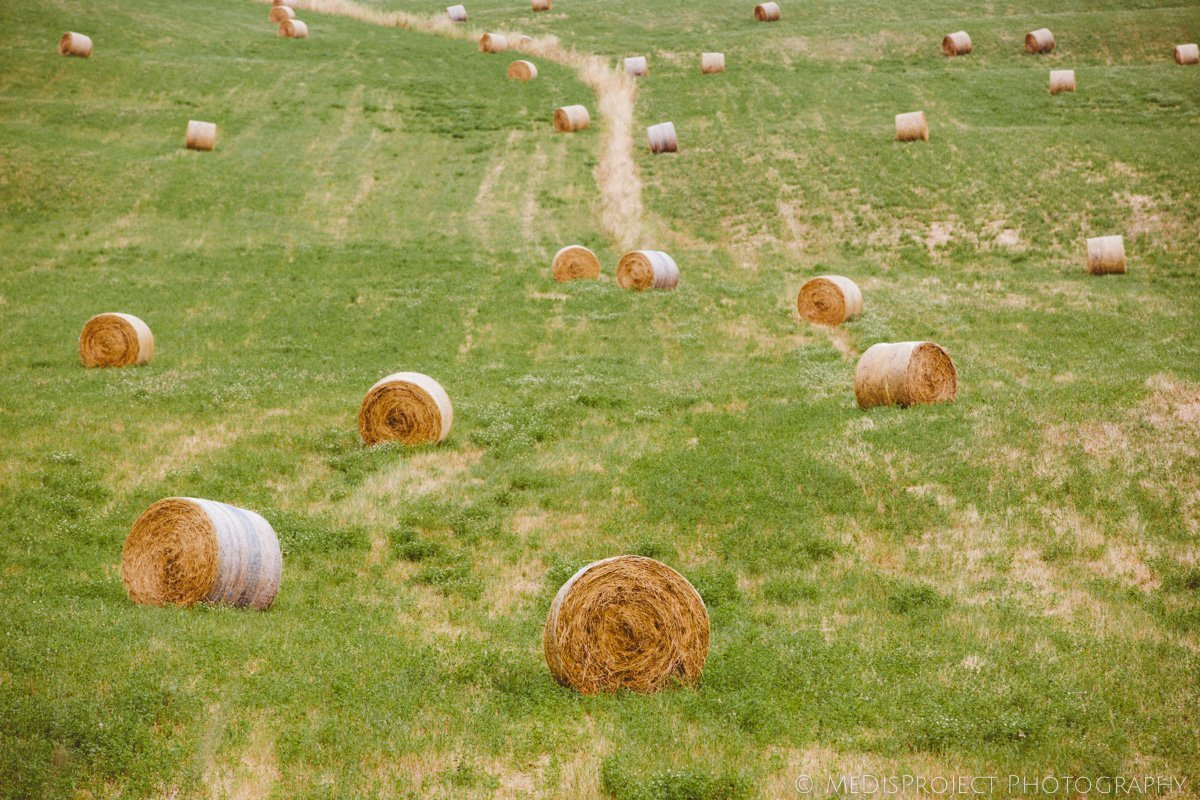 Hay bales field in Tuscany