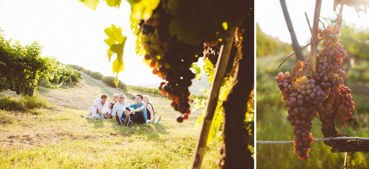 family in the vineyards with fresh grapes