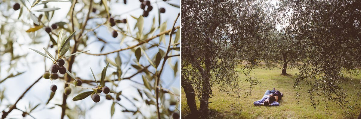 couple laying down in olive grove at fall