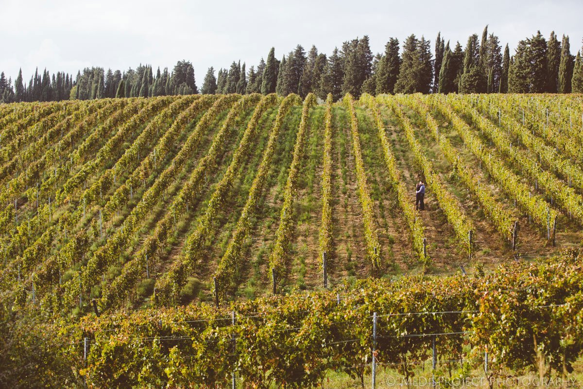 love story photo session in the Tuscan vineyards