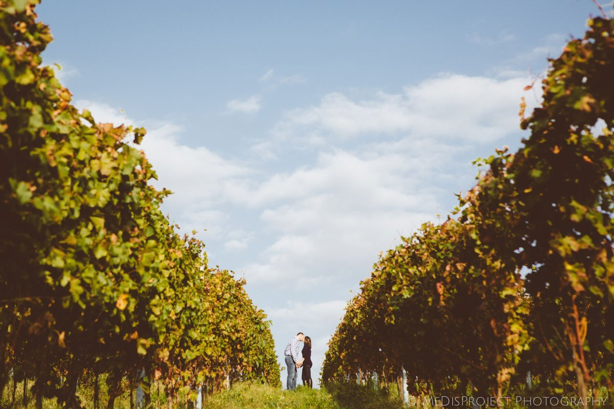 Autumn love in the vineyards