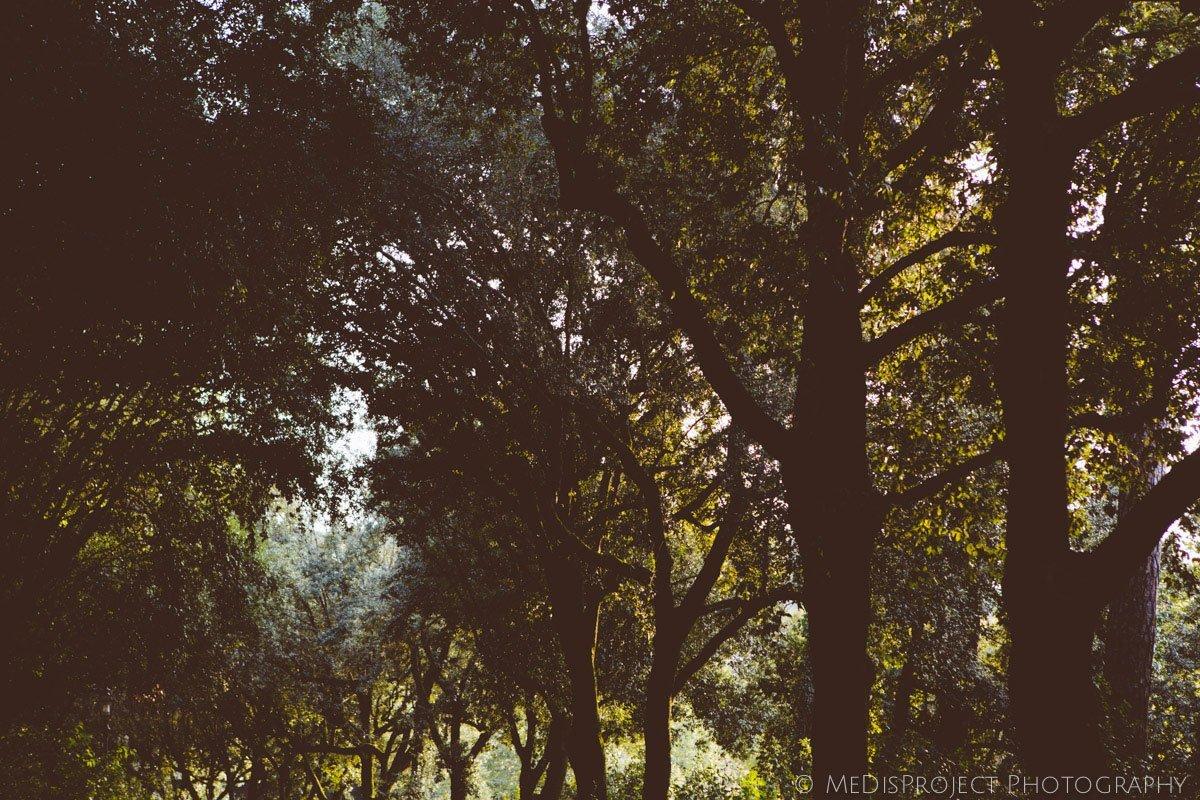 19_engagement photographers in tuscany
