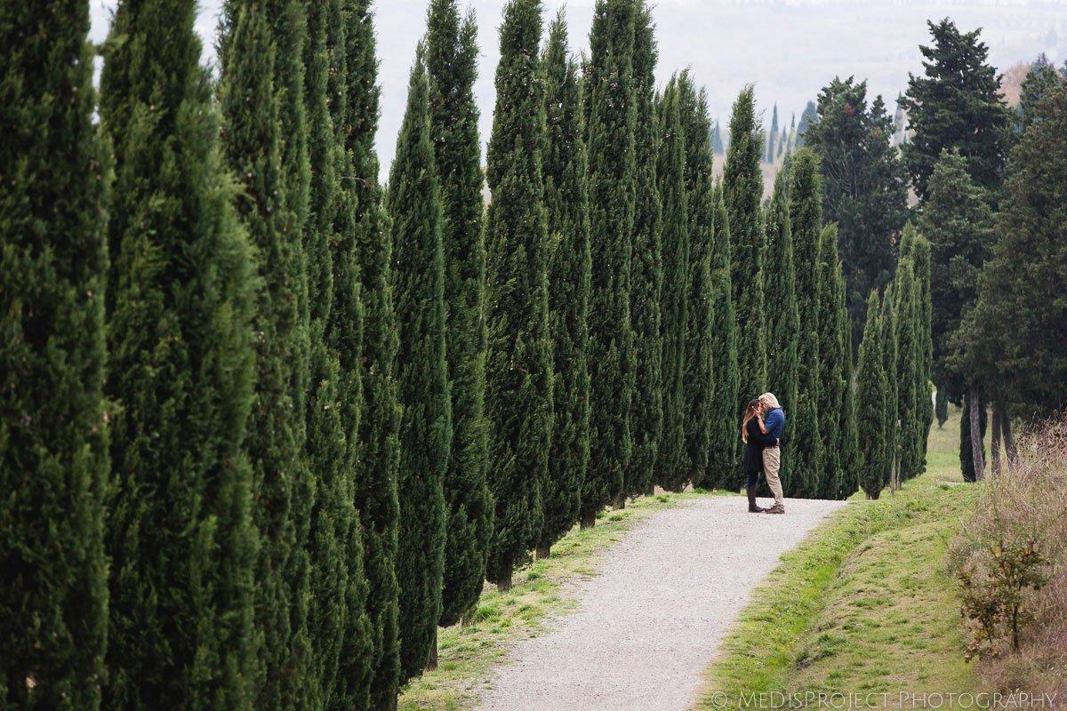 cypress alley in certaldo alto