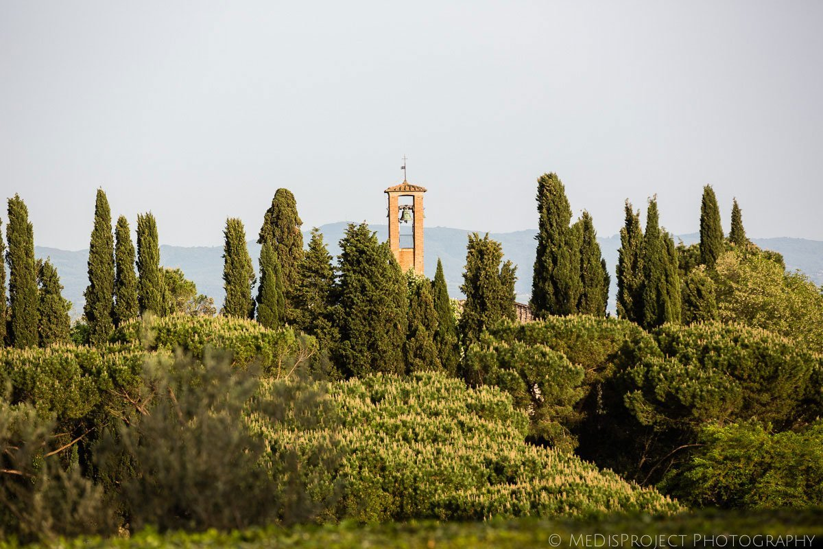 bell tower among the cypress trees