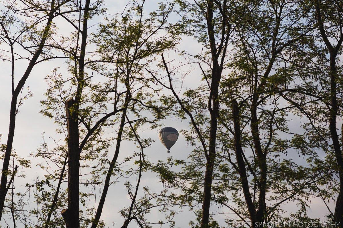 hot-air balloon through the branches