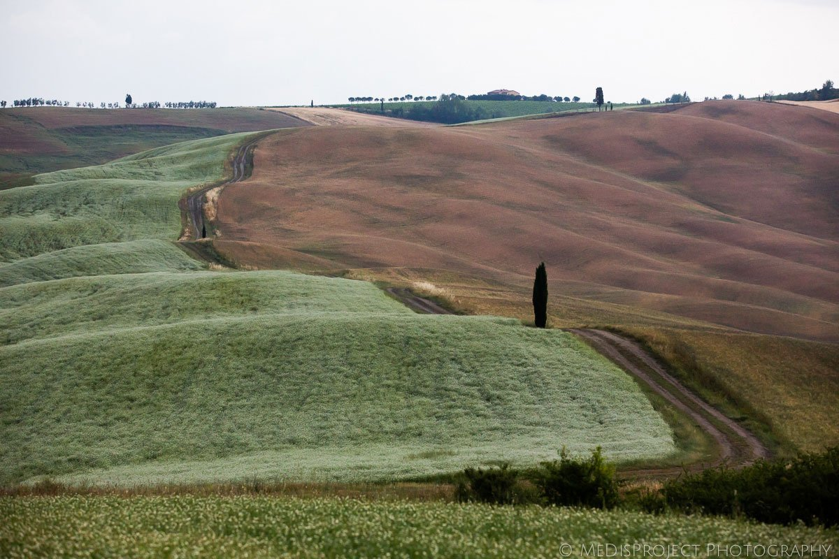18_family photographers in Val d'Orcia