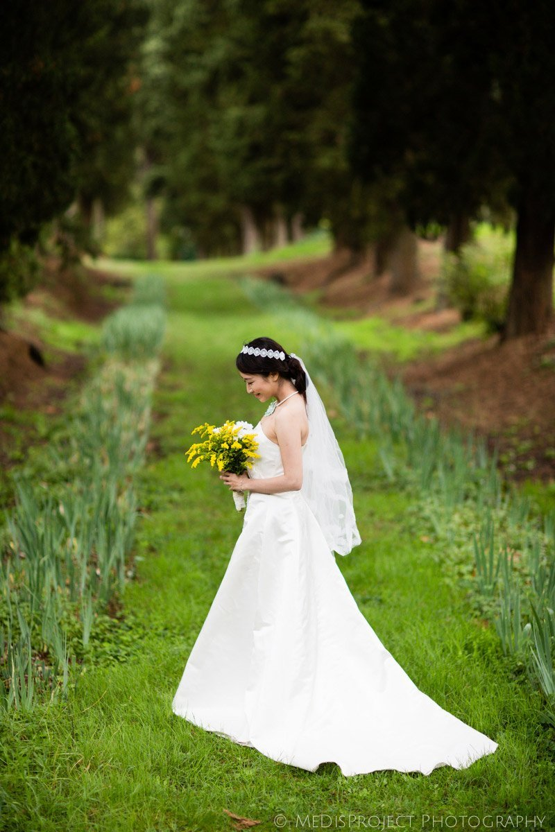 chinese bride standing in the middle of a cypress boulevard in Villa Agape