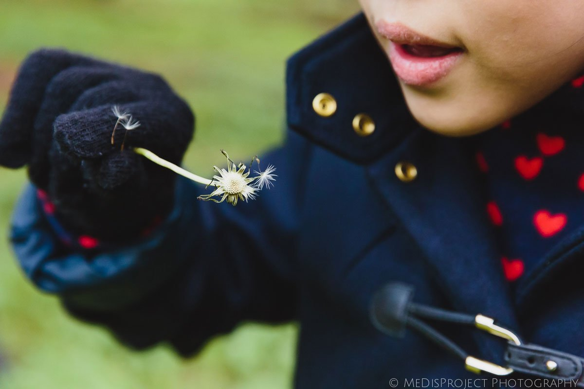 playing with dandelion clock