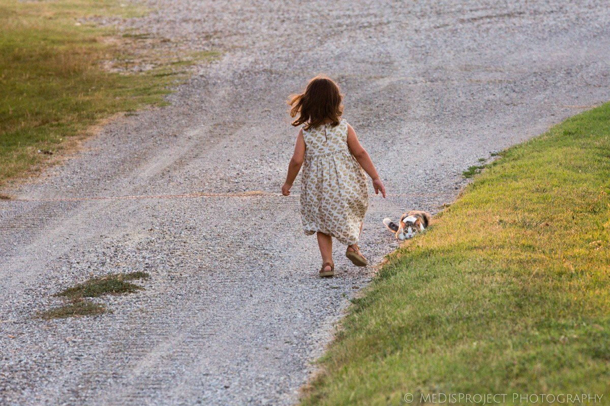 little girl running towards a crouched kitten in a Tuscan farmhouse
