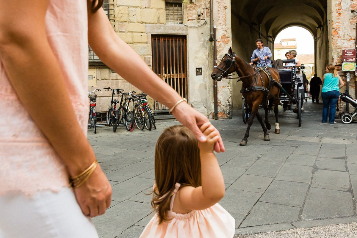 carriage photos in Lucca