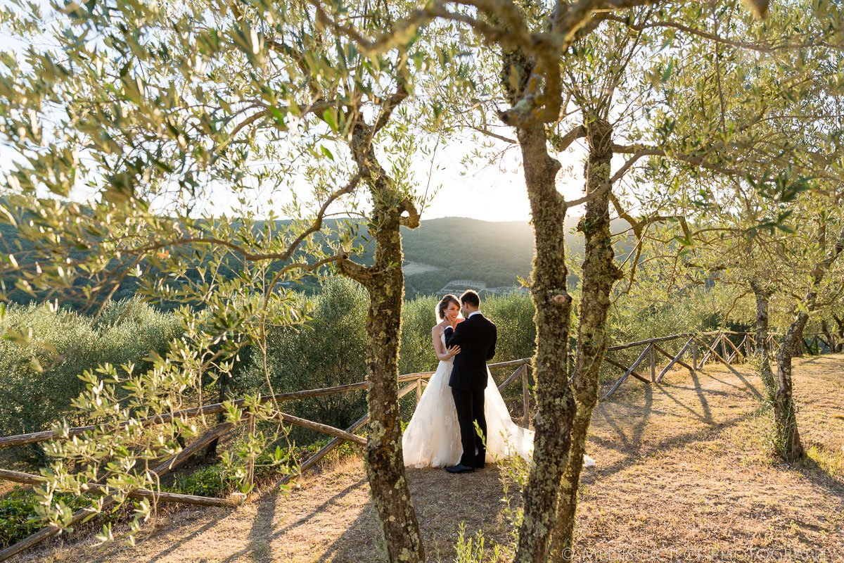 bride and groom romantic moment in the olive grove