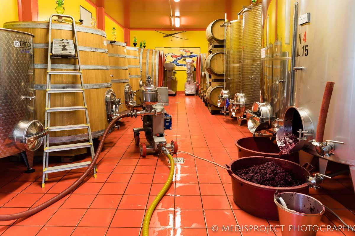 NostraVita colorful cellar