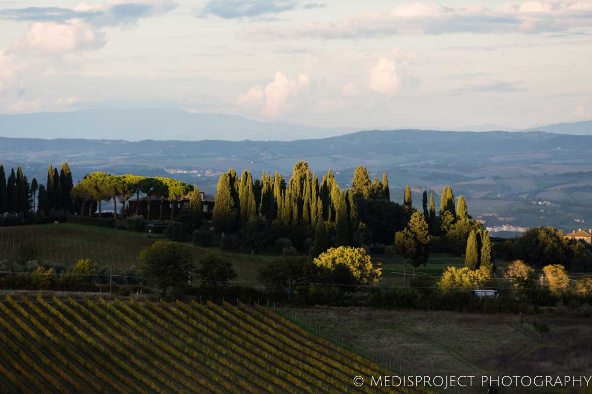 the view from NostraVita winery in Montalcino